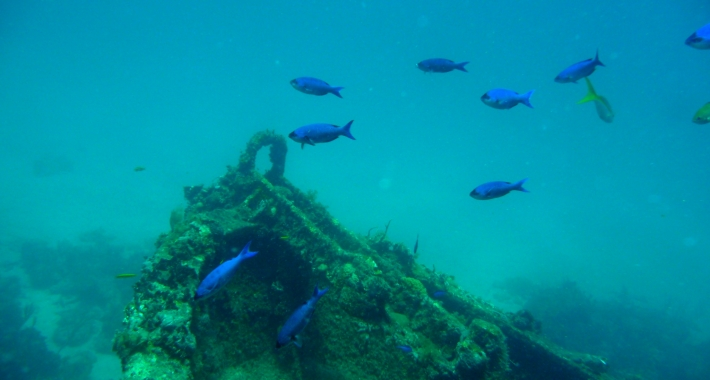 Resti di un galeone spagnolo sui fondali di Bahía de Santiago de Cuba.