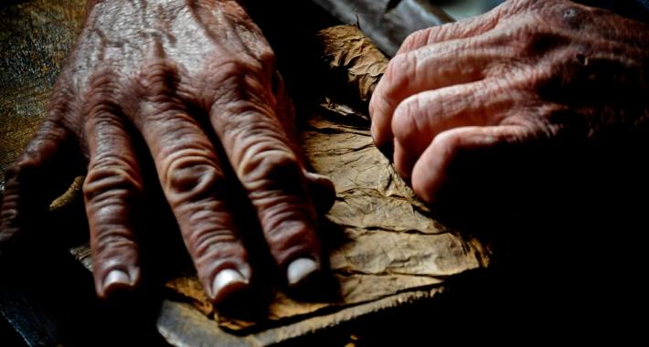 Torcedor mentre crea un sigaro cubano