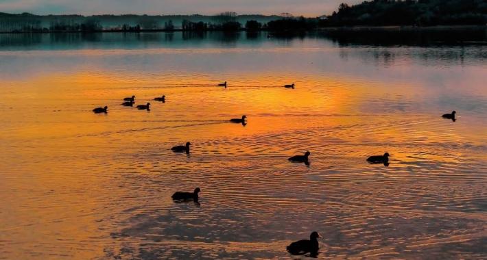 Parco del Lago di Candia