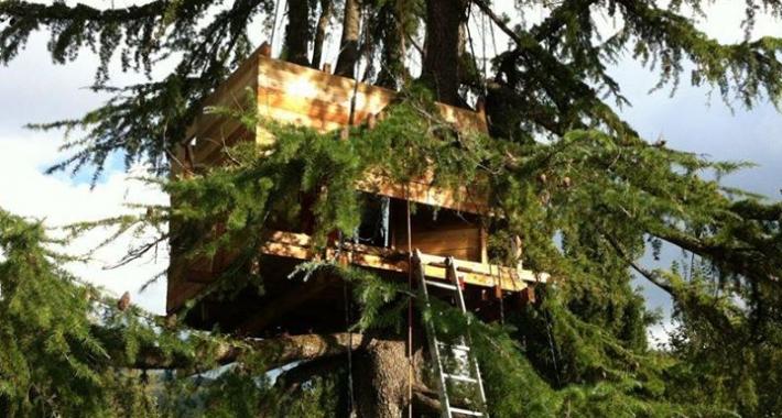 Casa sull'albero Tree-sleeping